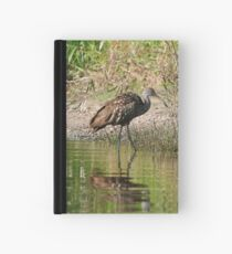 Beautiful Feathers Hardcover Journal