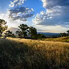 Sunset over the Grasslands by Stuart Row