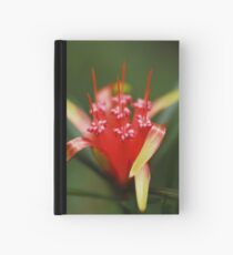 Red Beauty Hardcover Journal