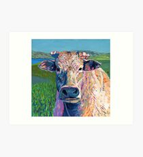 Bovine (Cow. Well, technically a bullock) Art Print