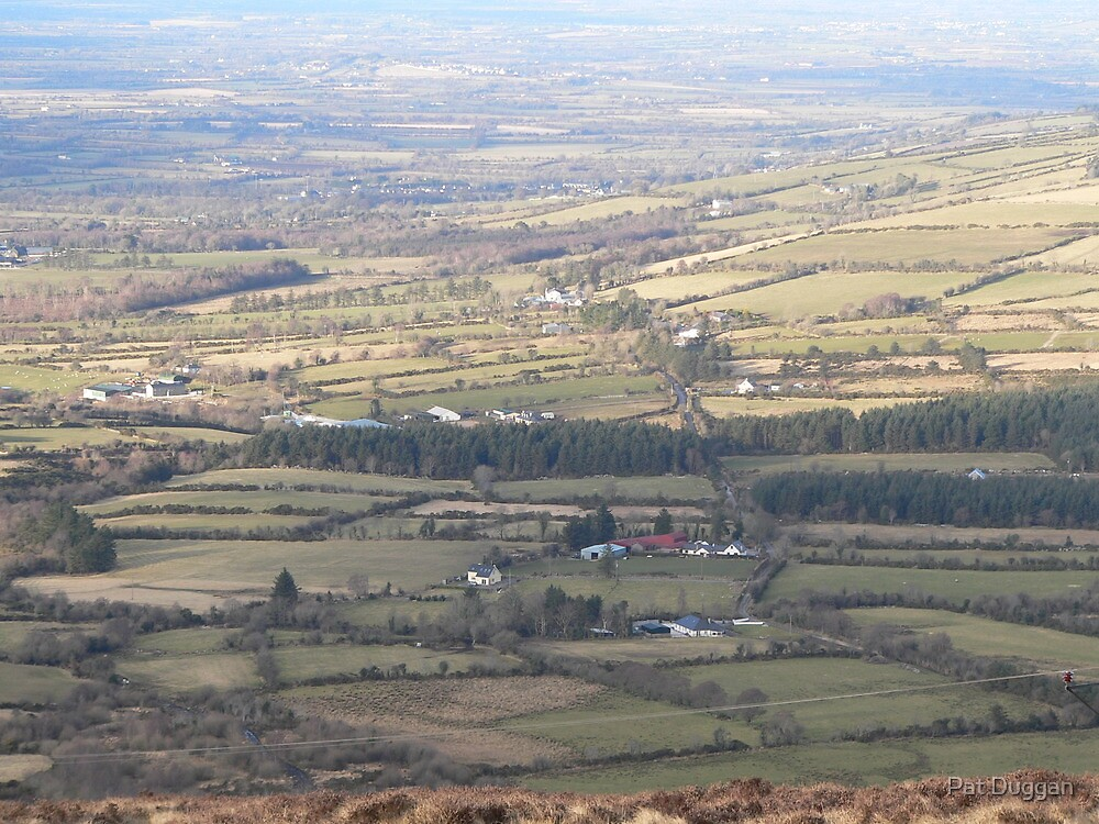 Looking towards County Carlow,,from road round Mount Leinster. by Pat Duggan