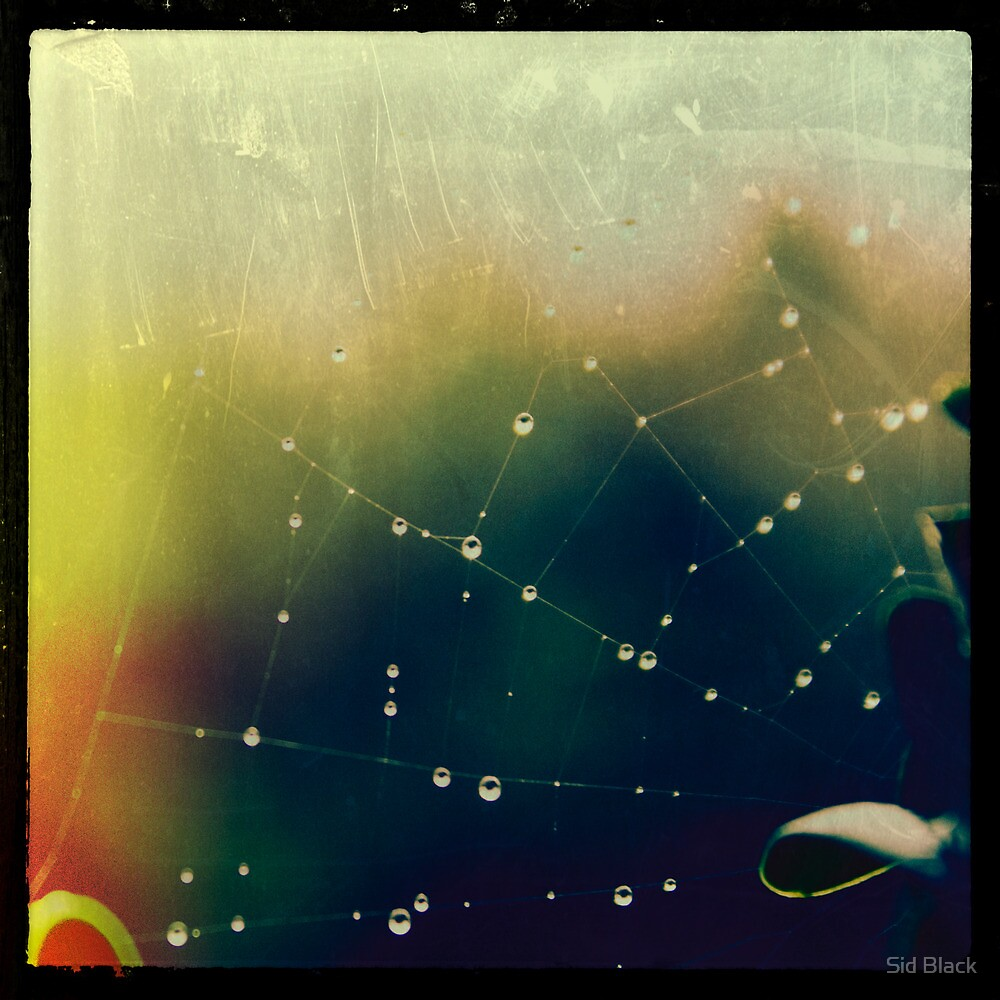 Pearls by Sid Black