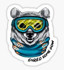 Shred the gnar Sticker