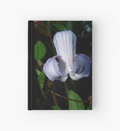 Pine Hyacinth  (Clematis baldwinii ) Hardcover Journal