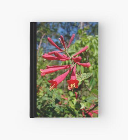 Trumpet Honeysuckle (Lonicera sempervirens) Hardcover Journal