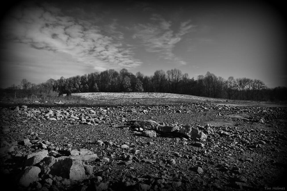 Hill Tundra by Tim Holmes