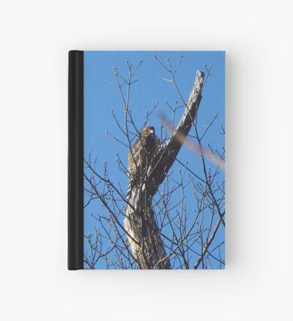 Got my eye on you... Hardcover Journal