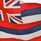 Hawaiian Flag by Vanessa Rooke