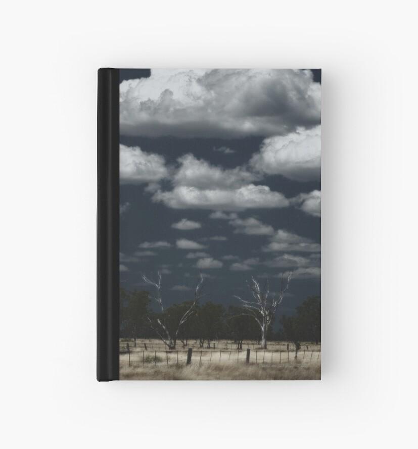 Dry Country Sky © by Vicki Ferrari