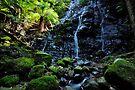 Another World - Mount Wilson by DavidIori