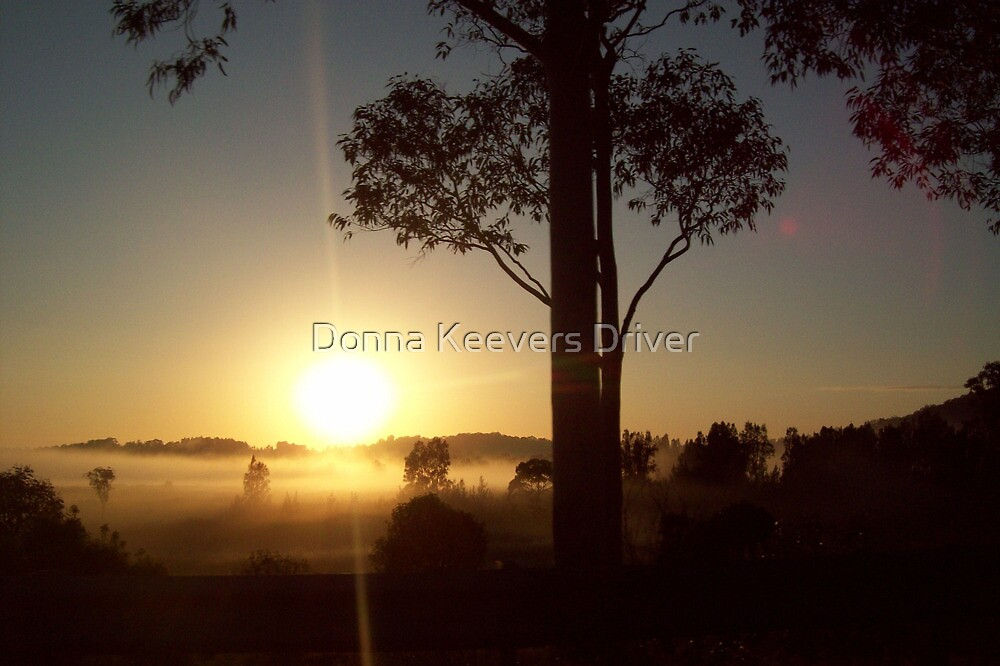 Misty Sunrise by Donna Keevers Driver