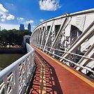Bridges of Singapore 2 by Adri  Padmos