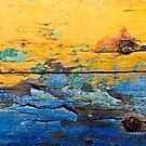 High seas warnings by Susana Weber