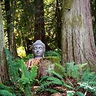 Buddha by Jaime Pharr