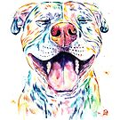 Tango The Smiling Pit Bull by Lisa Whitehouse