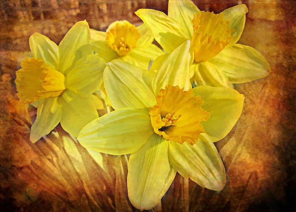 Spring Sonata by Sviatlana