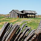 The Sod House Ranch by Julia Washburn