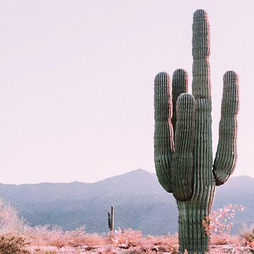 Sueños de cactus de RoseAesthetic