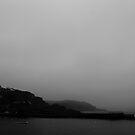 Morning Mist by Sam Mortimer