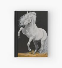 Juicioso Hardcover Journal