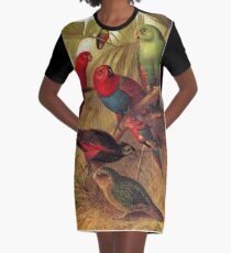 Parrots in the Jungle Graphic T-Shirt Dress