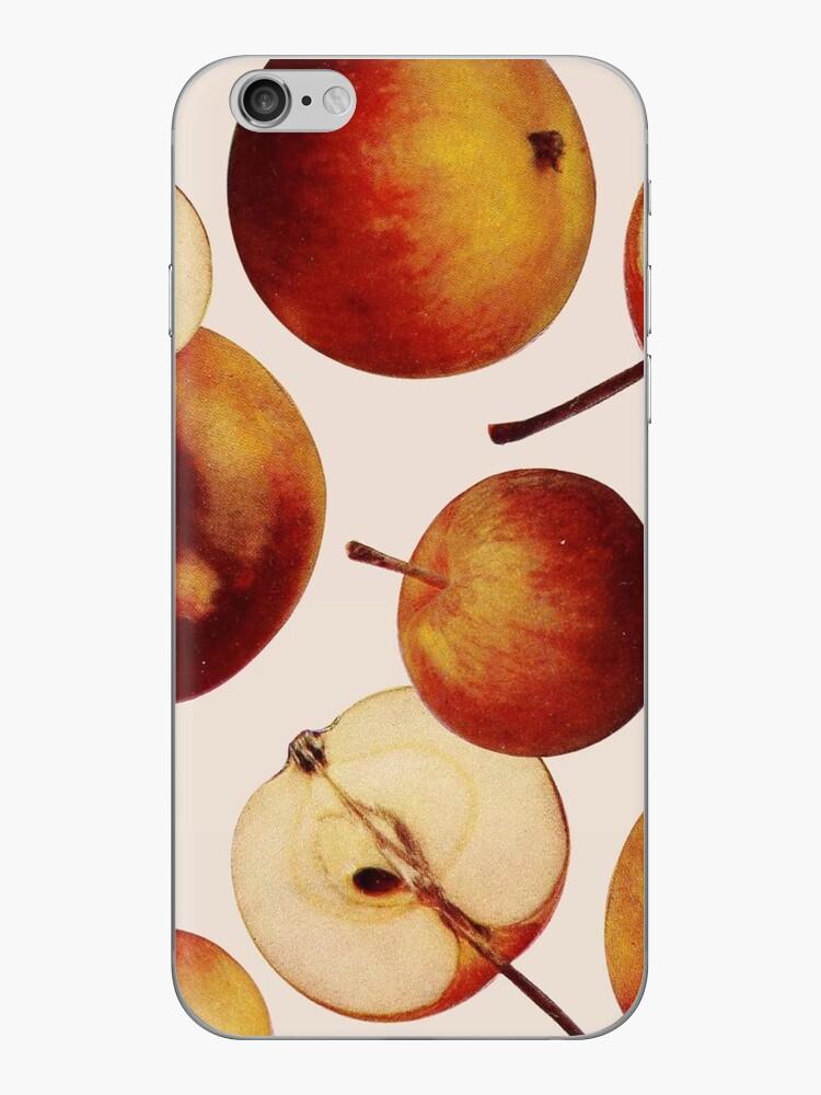 Vintage Apples Print by dickybow