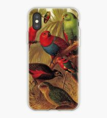 Parrots in the Jungle iPhone Case
