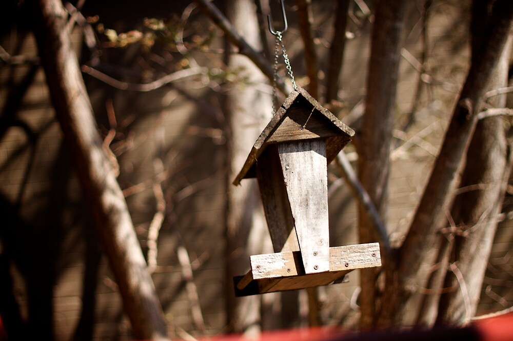 The Empty Birdhouse at Café Beaz by Russell Greenwood