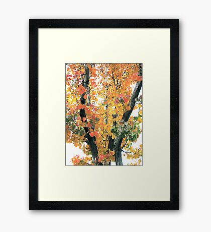 Fall Foliage Fiesta Framed Print