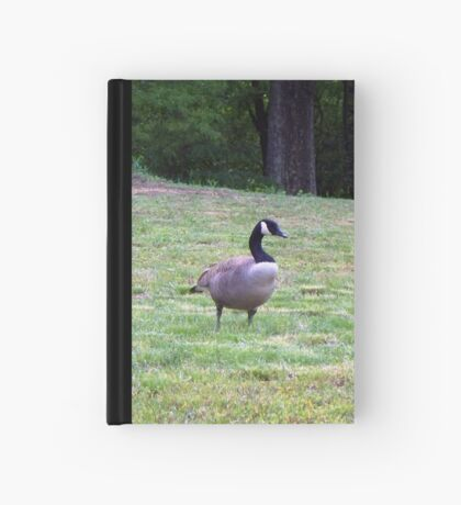 Wild Goose Chase 9 Hardcover Journal