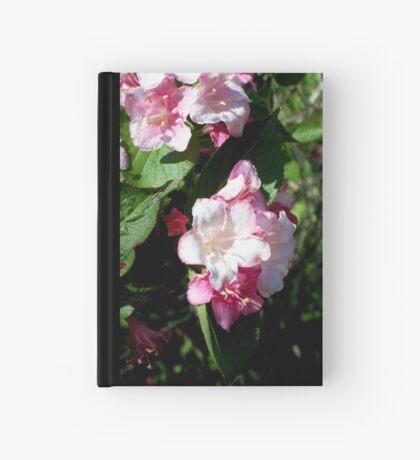 Spring Pinks - Carnival Wigelia 3 Hardcover Journal