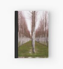 Willows Hardcover Journal