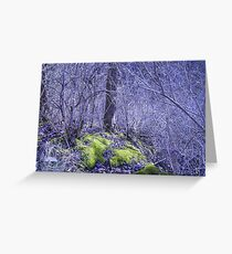 Two Feet Firmly Planted Greeting Card