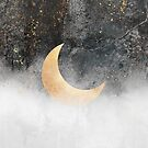 Crescent Moon by Elisabeth Fredriksson