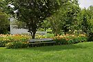 Bench in the Garden by Sandy Keeton