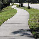 The Winding Sidewalk by MichelleR