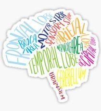 Brain Typography Word Bubble RN Neuroscience Nurse Neurologist  Sticker