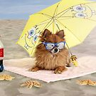 Fun at the beach by grinandbearit