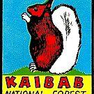 «Calcomanía de viaje vintage de ardilla de cola blanca de Kaibab» de hilda74