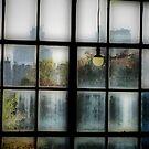 Window on Minneapolis by shutterbug2010