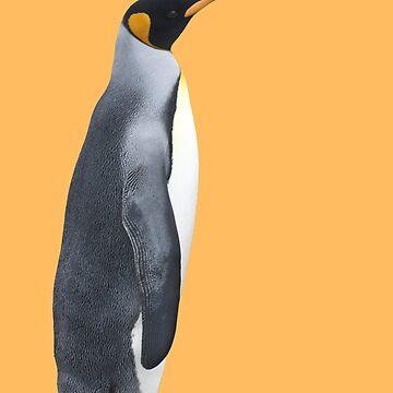 King Penguin by janemcdougall