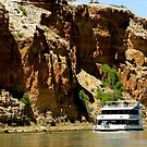 Dwarfed............. by Dave  Hartley