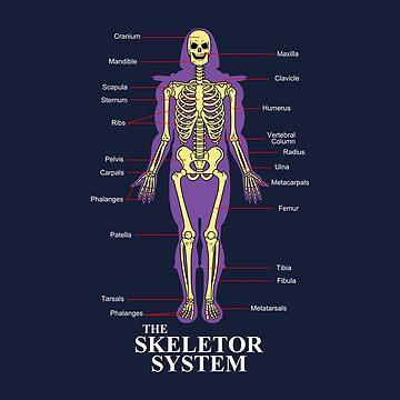 The Skeletor System by BoggsNicolasArt