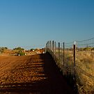 Canine Berlin Wall - Wild Dog Fence 1 by Andrew Mather