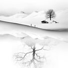 Know Your Roots by Sto Hitro