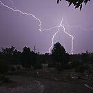 Lightning Stick Man by Grant Scollay