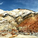 Aquinnah Cliffs by Dick  Iacovello