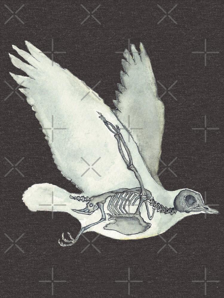 Bird Skeleton: Animal Dove Anatomy by osuariumfloreus