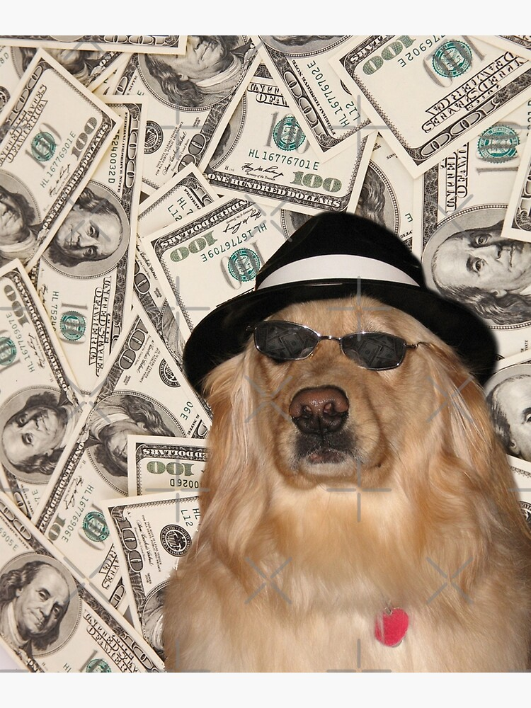 Rich Dog, Doggo #3 by Elisecv