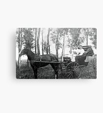 horse and buggy Metal Print